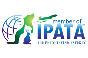 Pet Shipping | Pet Relocation - Move One Pet Shippers
